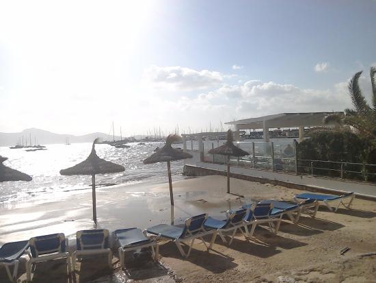 Plage de Pollença - Picture of Port de Pollenca Beach, Port de Pollenca - Tri...