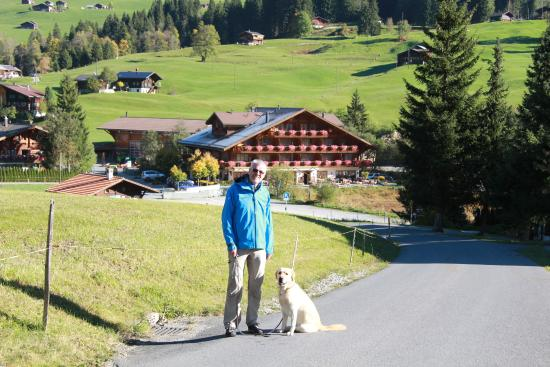 Hotel Alpenland Lauenen 이미지