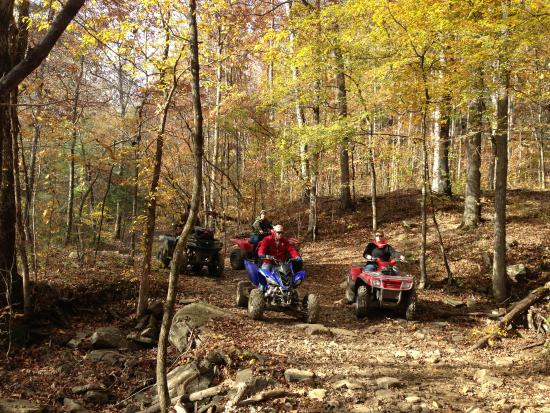 Mulberry Mountain Atv Trails Picture Of Mulberry