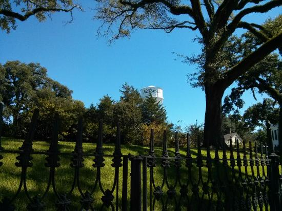 Natchez, MS: View from Stanton Hall