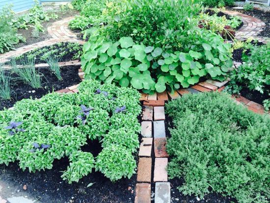 Brandon, VT: The Herb Garden Blueberry Hill Inn
