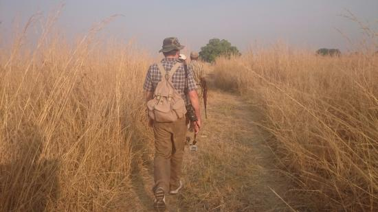 Buffalo Camp: Walking safari