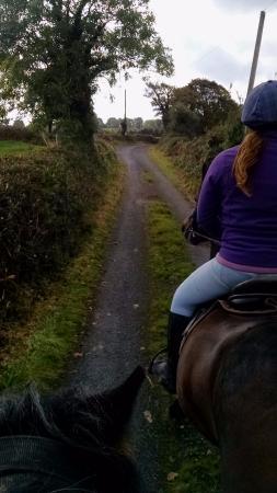 Quin, Ιρλανδία: Country road