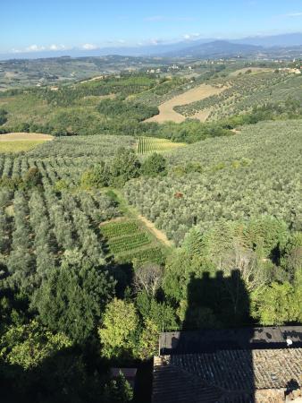 Tuscany Bike Tours: photo1.jpg