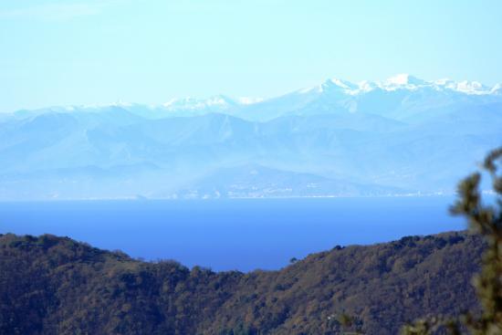 Hotel Montallegro Rapallo Tripadvisor