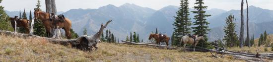 Diamond D Ranch: Pinyon Peak ride
