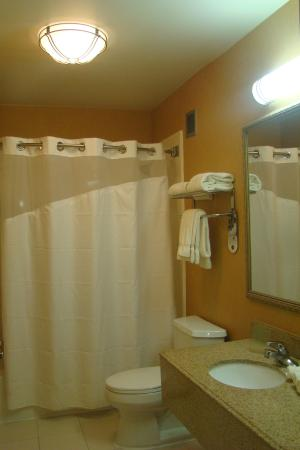 New Albany, MS: Guest Bathroom