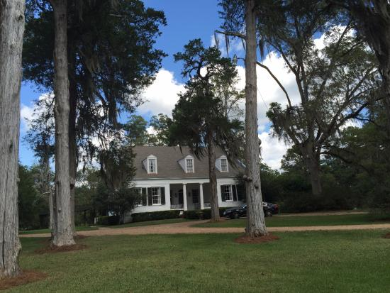 Cedar Grove Plantation: The main house