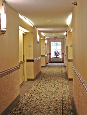 เซาท์บอสตัน, เวอร์จิเนีย: Hallway