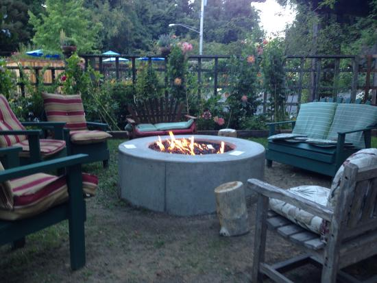 Fern Grove Cottages: Fire pit in the garden