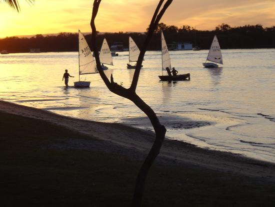Noosa River: Sunset activity