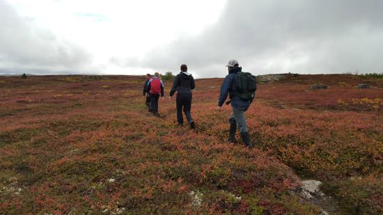 Caribou Lodge Alaska: Hiking on an old caribou trail