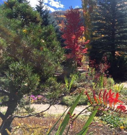 Betty Ford Alpine Gardens, Vail, CO