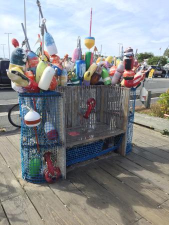 Cape Cod Scenic Tours: photo6.jpg