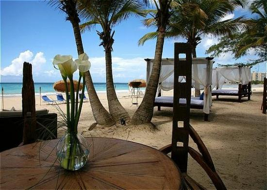 The Beach House Hotel: Beach area