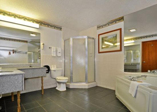 Econo Lodge Inn& Suites Albany: GAKJAC