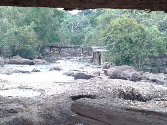 State of Rondonia: Lindo visual