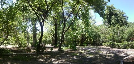 Banc Au Milieu Du Jardin Photo De Jardin Bizot Blida Tripadvisor