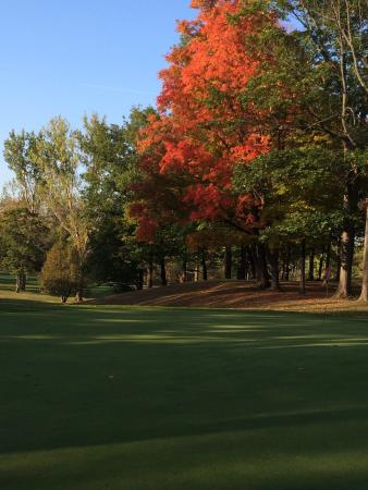 Forest, Kanada: 12th green in October