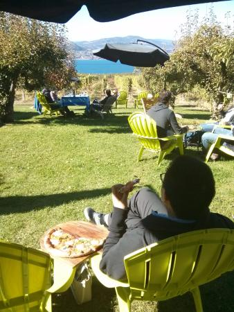 JoieFarm Winery: View from the lawn chairs while sipping and munching on pizza at Joie.