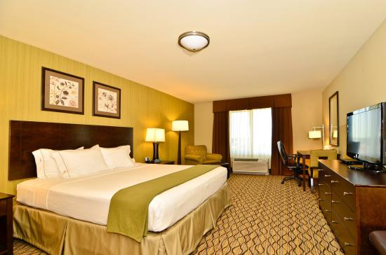 Holiday Inn Express & Suites Williston : Single Bed Guest Room