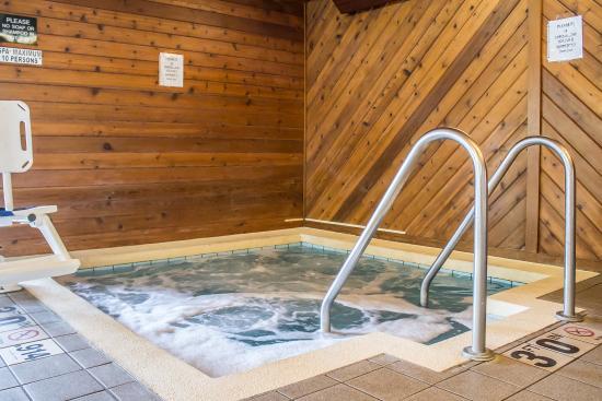 Quality Inn: Pool