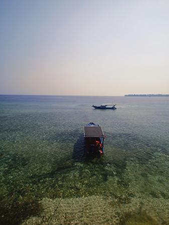 Bunaken Cha Cha Nature Resort: リゾート前の海