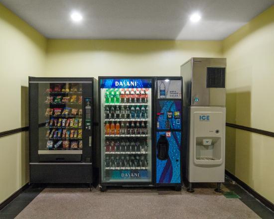 布魯克 290 號公路品質套房飯店照片