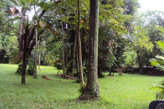 Sobha Botanical Gardens
