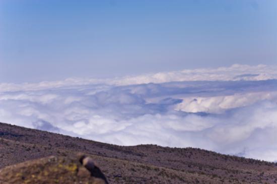 Kilimanjaro National Park, Tanzania: Килиманджаро, выше облаков