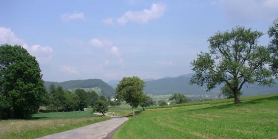 Strasse im Prinzbachtal Richtung Biberach