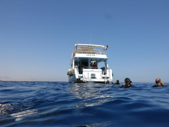 Werner Lau Diving Center Sharm el Sheikh