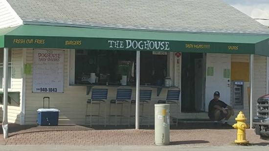 Not Just The Doghouse