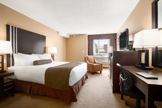 Days Inn Calgary Northwest : One King Bed Room