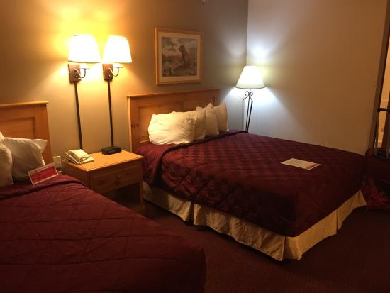 Ramada Summerset/Rapid City West: Very clean and relatively comfy.