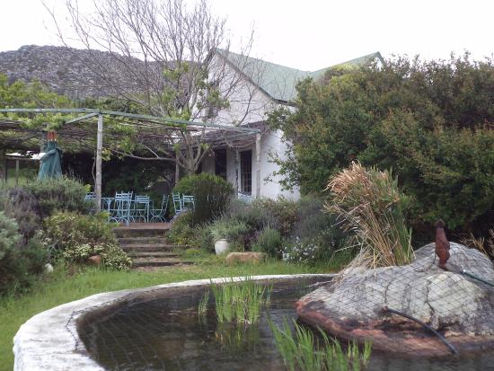 Cape Farmhouse Restaurant: Garden view of the Cape Farmhouse
