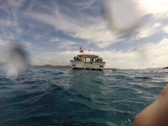 Blue Island DIvers : Surface post dive
