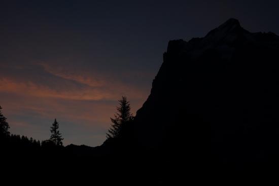 Wetterhorn: from Grindelwald