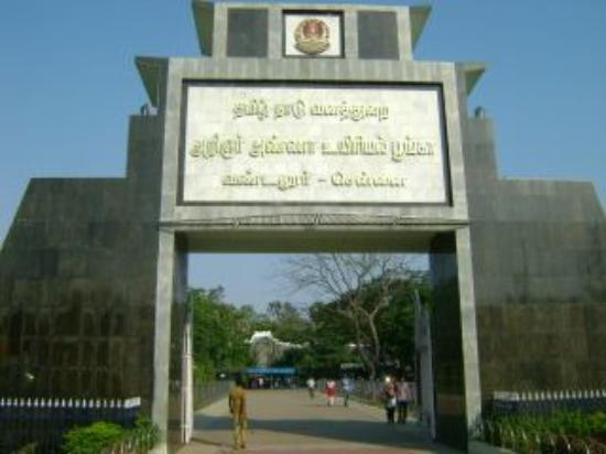 Image result for vandaloor zoo entrance