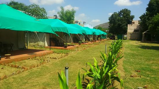 Pushkar Village Camp Resort