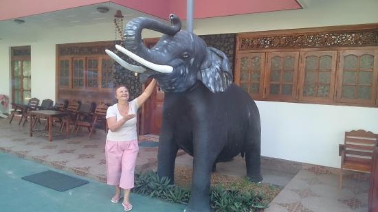 Sumal Villa: Около отеля