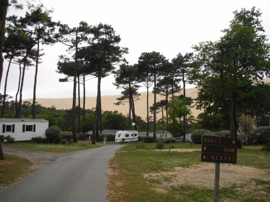 Vue du camping avec la dune en arri re plan foto di - Camping dune du pyla avec piscine ...