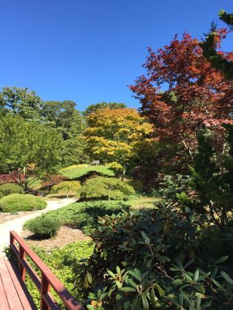 Chappaquiddick edgartown garden japanese