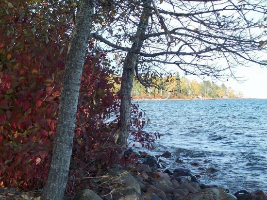 Little Marais Lakeside Cabins: Lakeshore