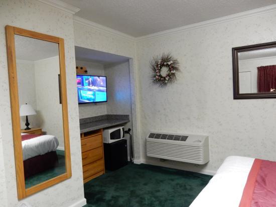 Travelers Inn: テレビ、電子レンジ、冷蔵庫があり便利でした。