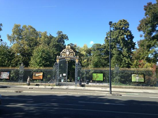P picture of jardin public bordeaux tripadvisor for Jardin public