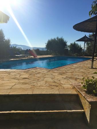Villa Rodon : Pool
