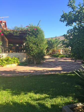 Villa Rodon : Garden