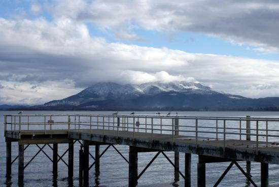 Lakeport C.A. Library Park