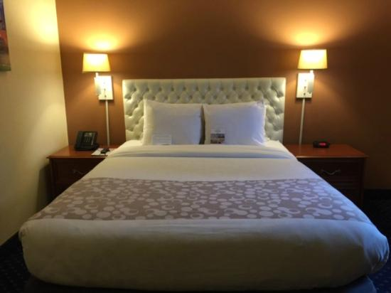 Hotel Focus SFO: Cozy and welcoming rooms.